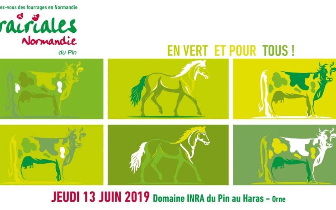 Haras du Pin : Prairiales Normandie du Pin le 13 juin 2019