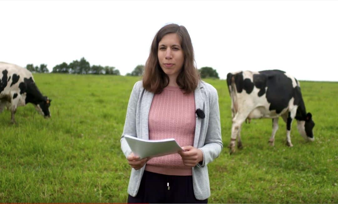 L'alimentation des vaches laitières – Point sur le pâturage au printemps 2019